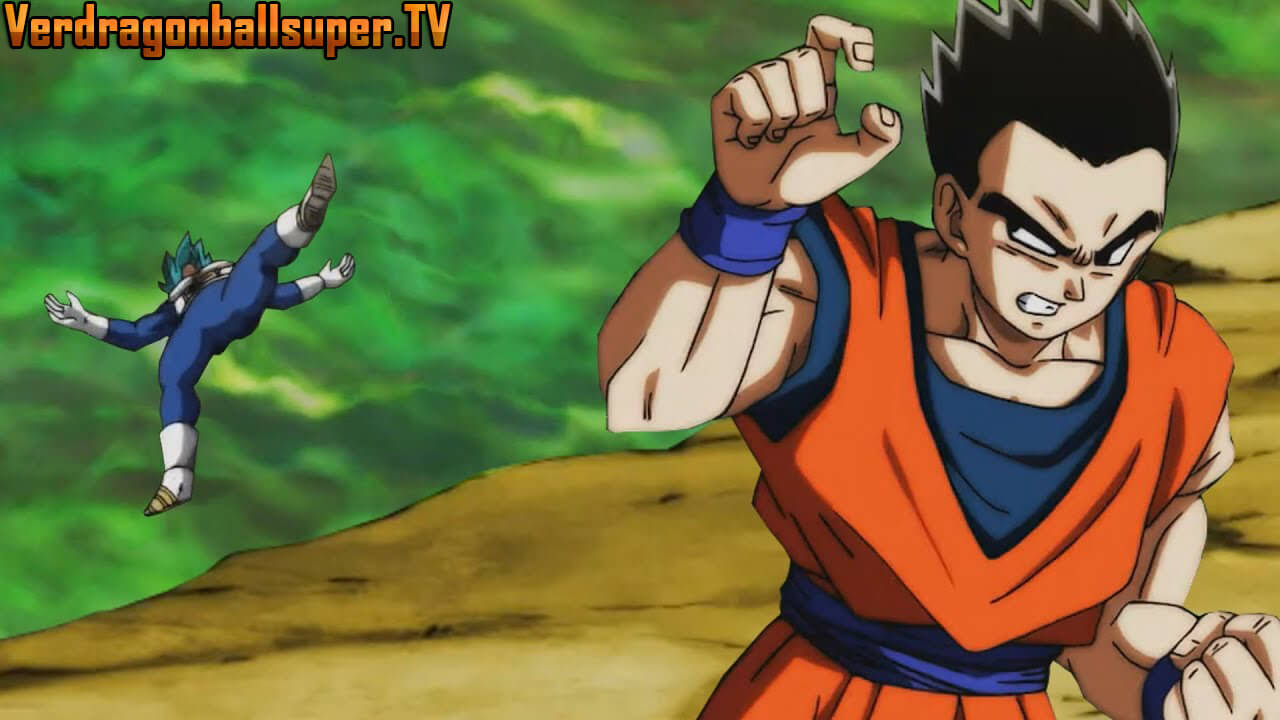Dragon Ball Super Capítulo 119 Sub Español