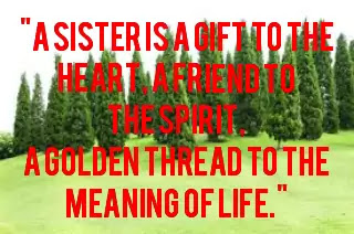 Image of best quotes on siblings, Image of quote on sister
