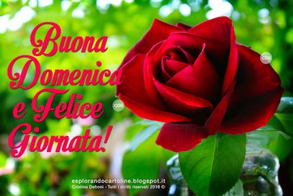 Cdb Cartoline Per Tutti I Gusti Cartolina Per Whatsapp