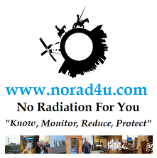 No Rad 4 U Logo