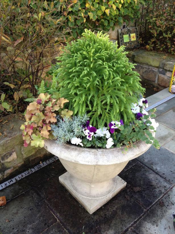 Autumn villa landscaping design tips to create a fabulous villa courtyard landscape