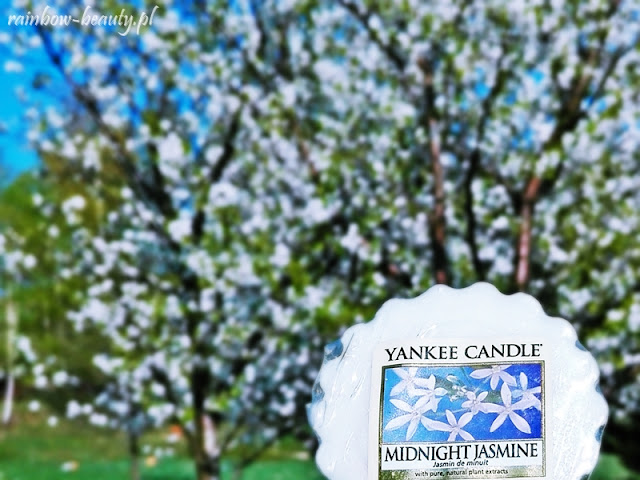 Midnight Jasmine - Yankee Candle