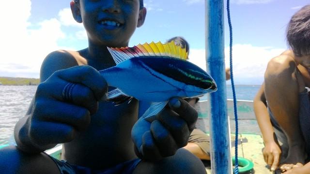 ikan di pantai gonda campalagian