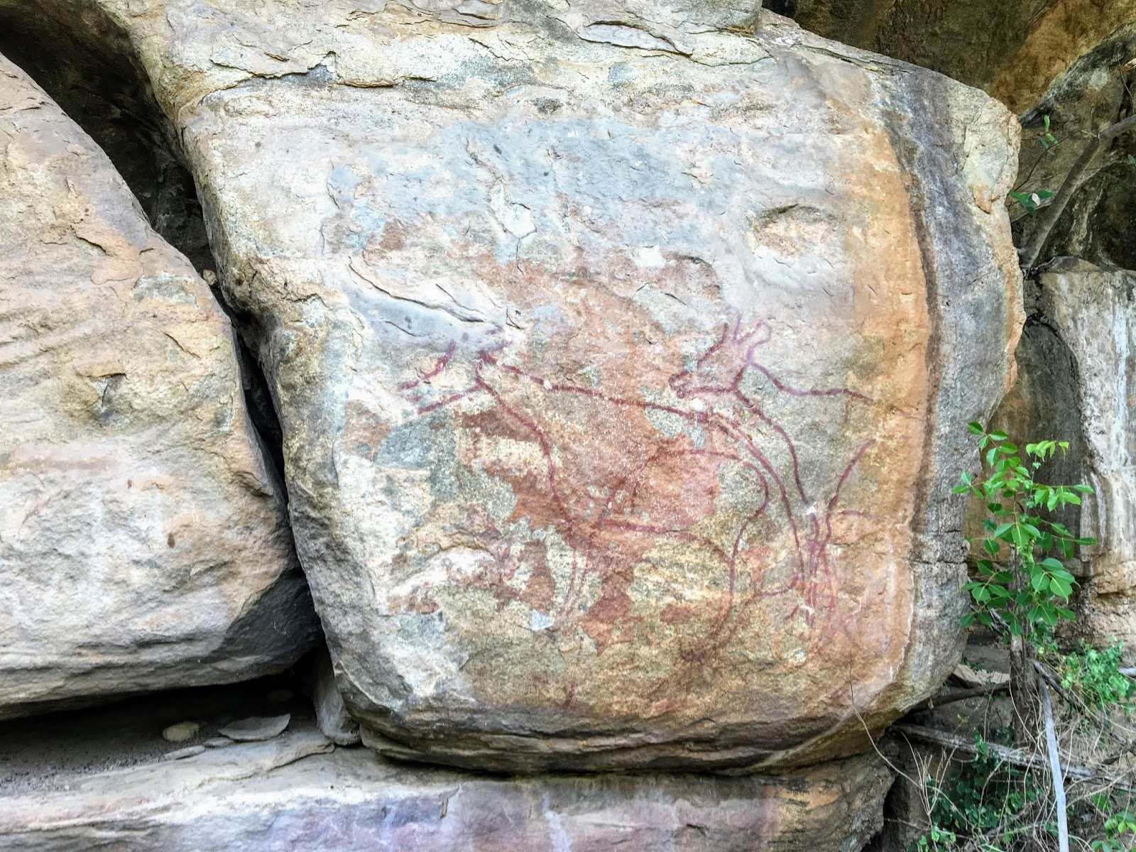 Ancient paintings at Madathala Rock Shelter