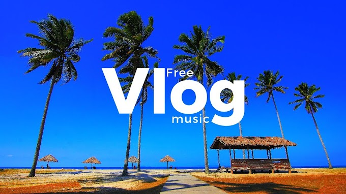 In The Nature by Spiring   Free Music   Tropical House