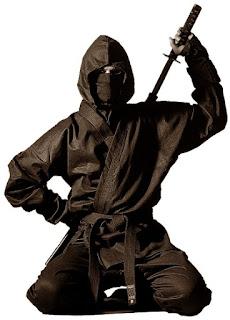 Luptatorii ninja