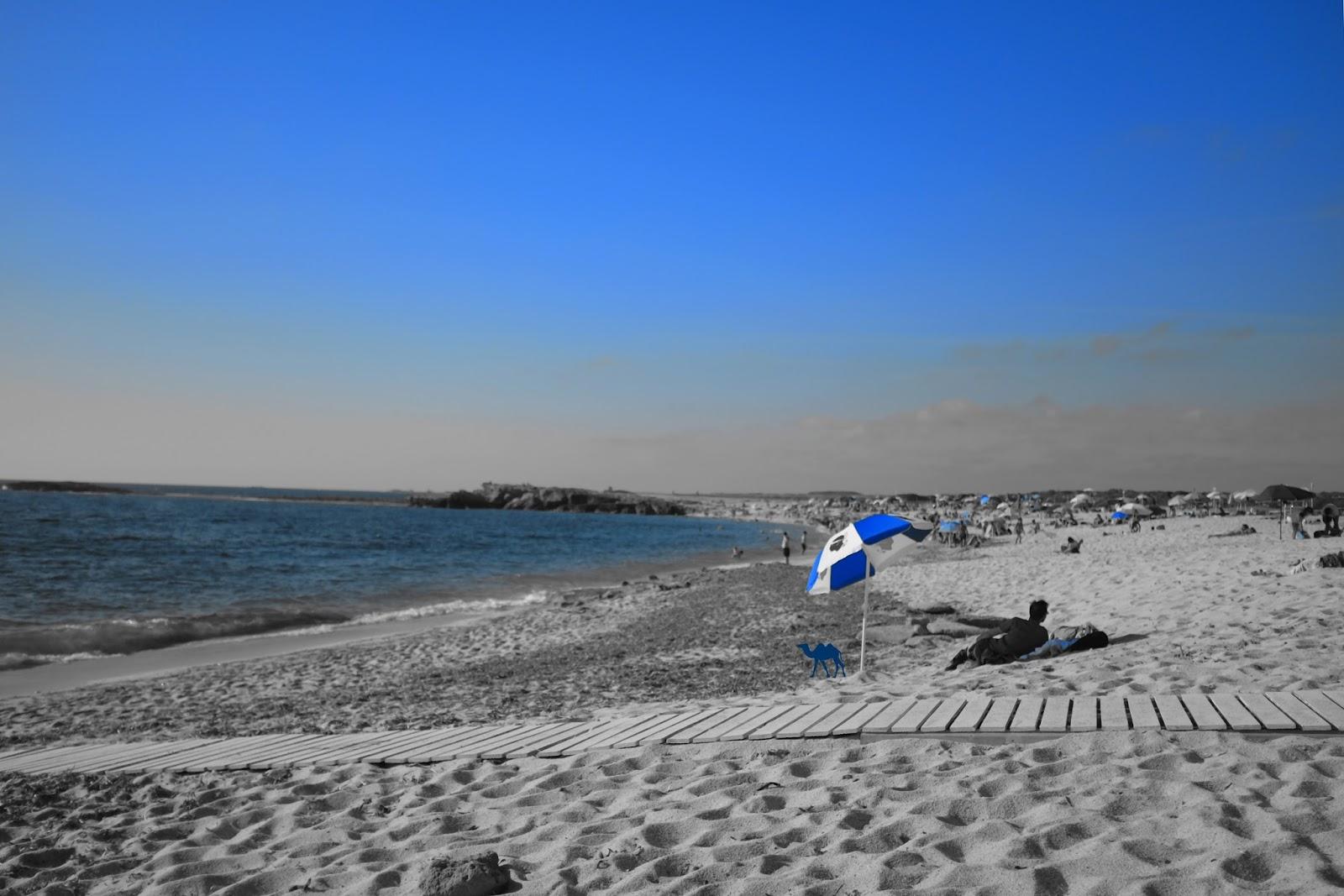 Le Chameau Bleu - Punta Is Aruttas