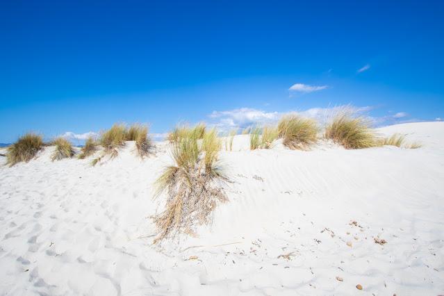 Spiaggia di Is Arenas biancas-Dune