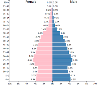 Vietnam demographic chart