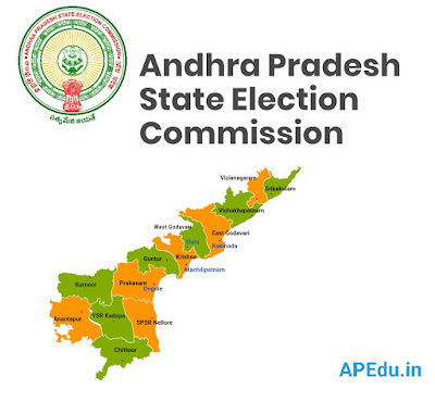 Local election results reserved in AP