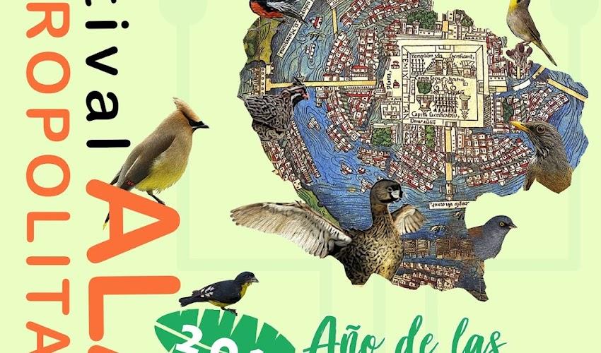 """Festival Alas Metropolitanas 2018 """"10 Años Volando Juntos"""""""