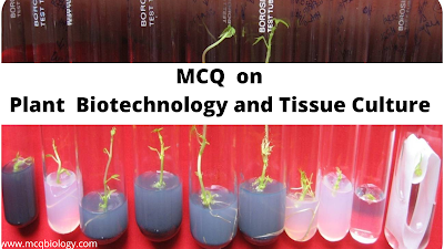 MCQ on Plant biotechnology and Tissue culture