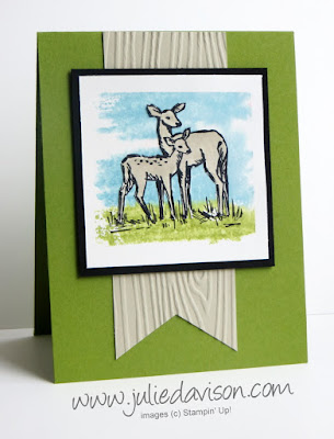 VIDEO: In the Meadow Deer Card with Watercolor Block Background #stampinup 2016 Occasions Catalog www.juliedavison.com
