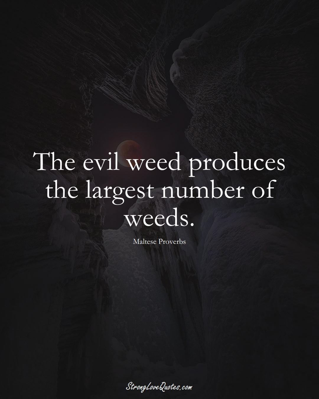 The evil weed produces the largest number of weeds. (Maltese Sayings);  #EuropeanSayings