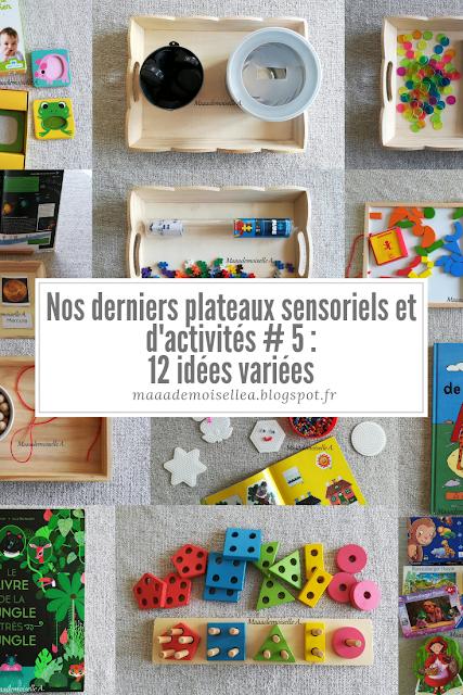    Nos derniers plateaux sensoriels et d'activités # 5 : 12 idées variées