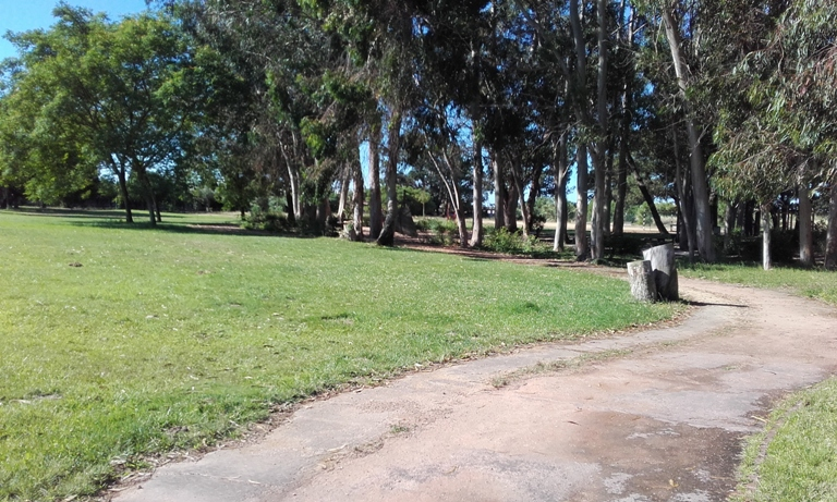 Parque de Merendas Samouco - zona Verde
