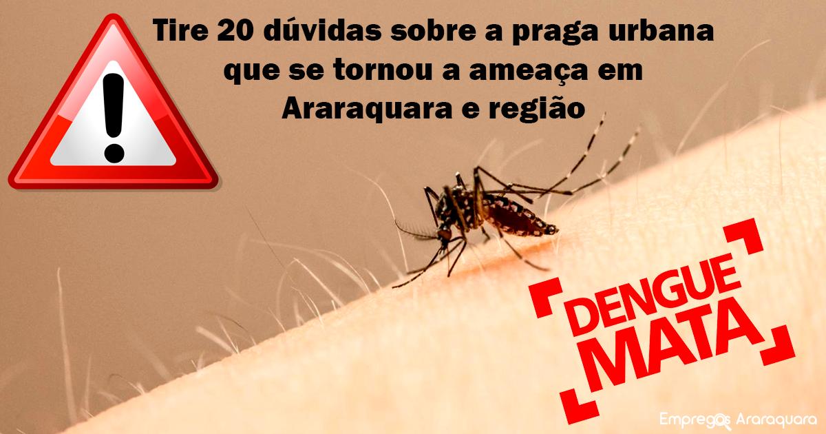 Oportunista e adaptável, 'Aedes aegypti' avança em Araraquara e região