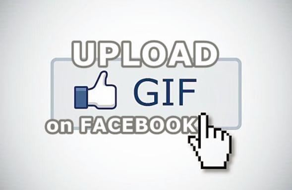 Upload animated gif facebook dagreenwing upload animated gif facebook negle Gallery