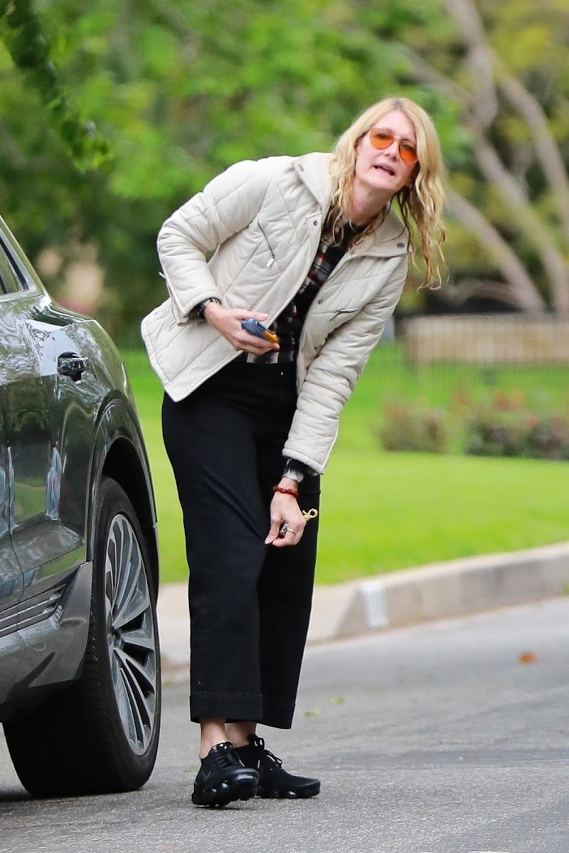 Laura Dern CLicked Outside in Los Angeles 22 Mar -2020