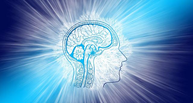 Brain Disintegrate
