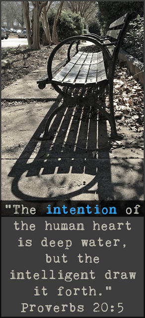 """The intention of the human heart is deep water, but the intelligent draw it forth."" Proverbs 20:5"