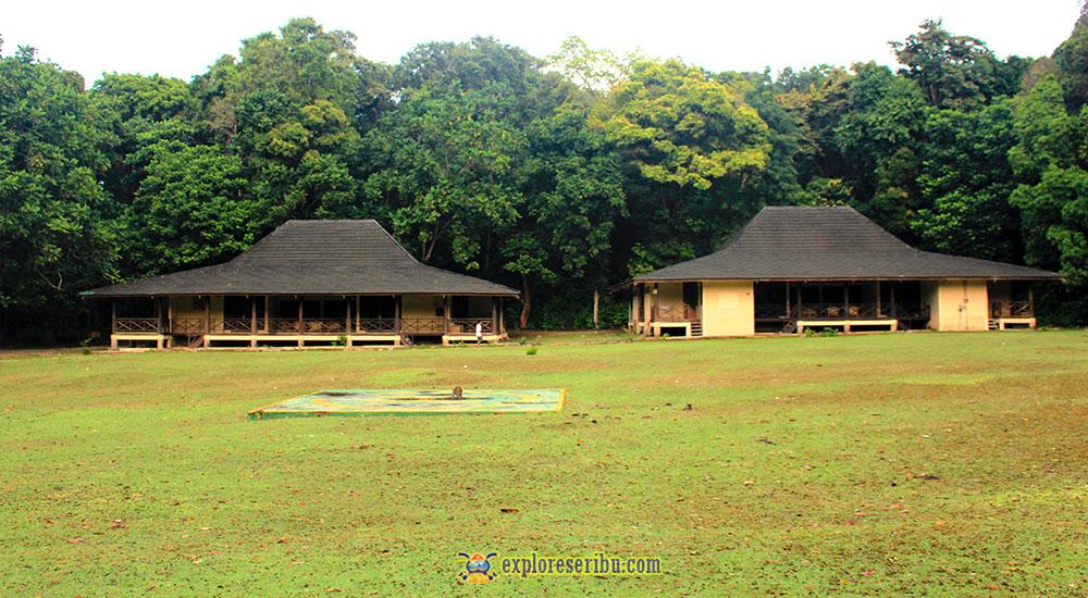flora 1 dan flora 2 resort di pulau peucang