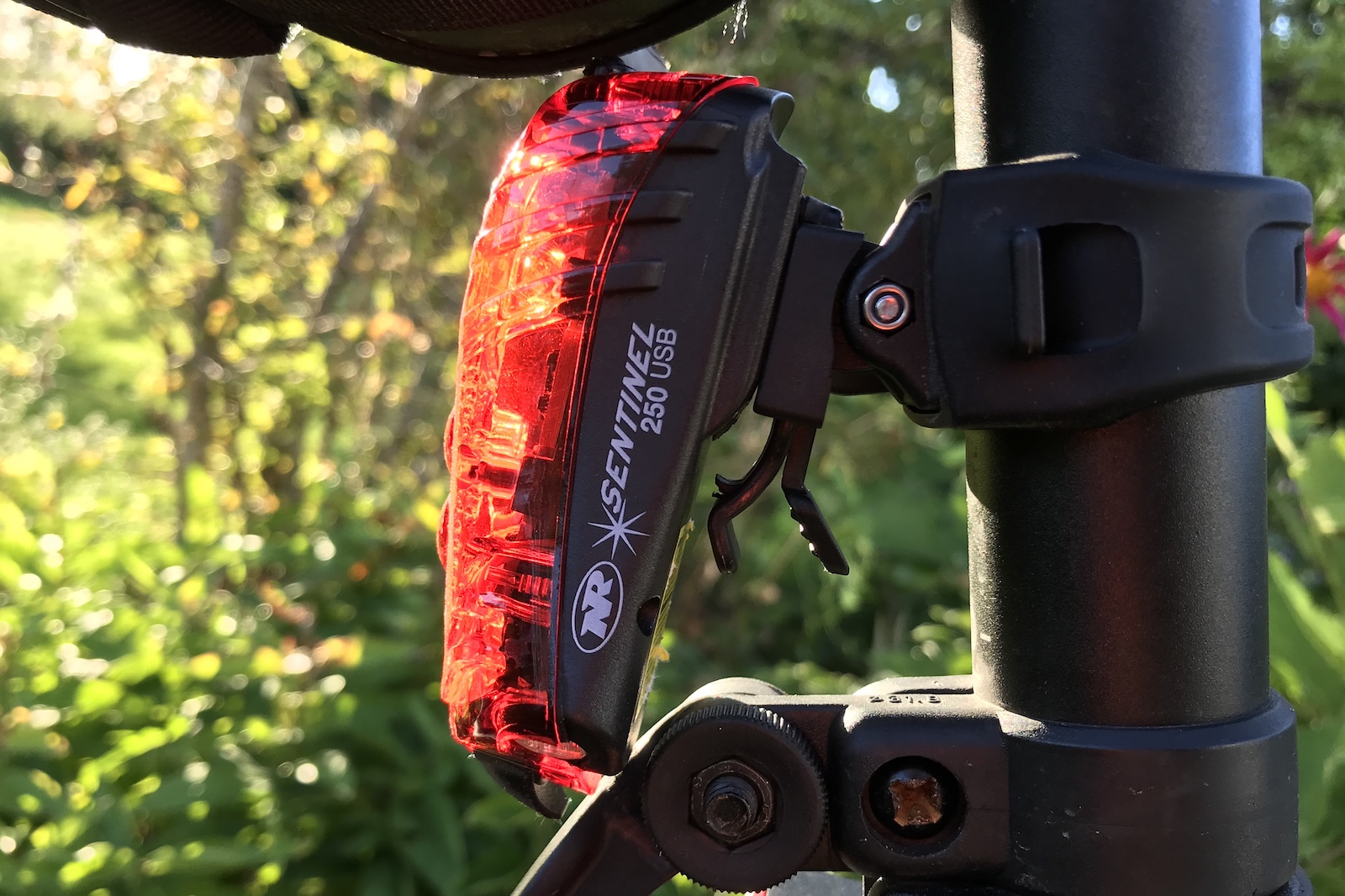 NiteRider Sentinel 250 Rear Bike Light