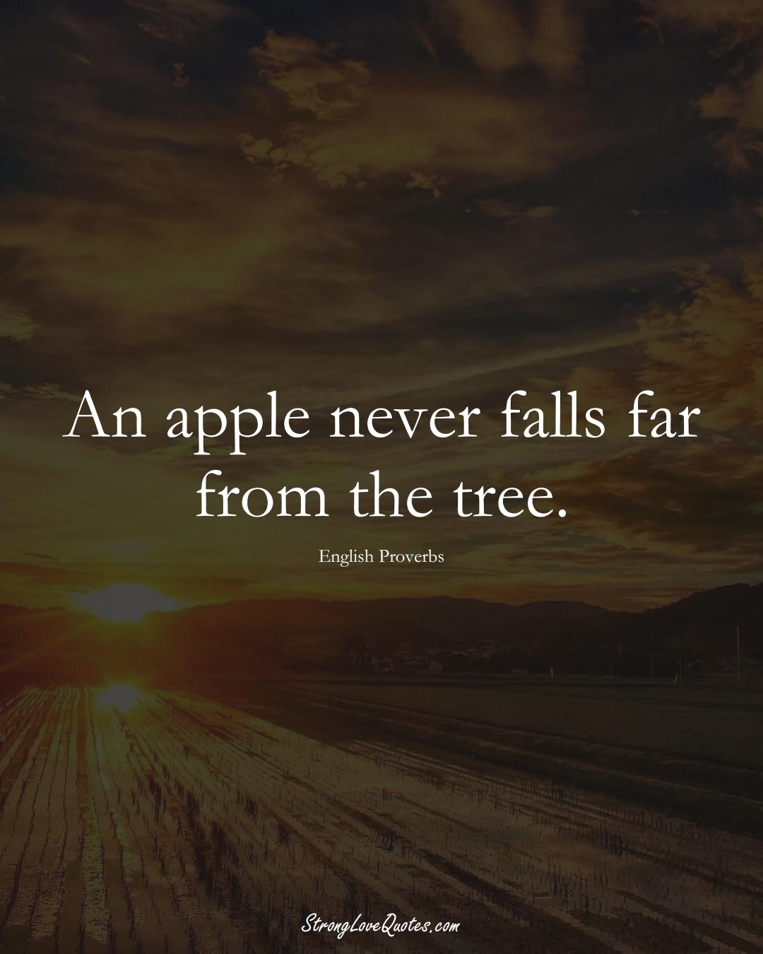 An apple never falls far from the tree. (English Sayings);  #EuropeanSayings