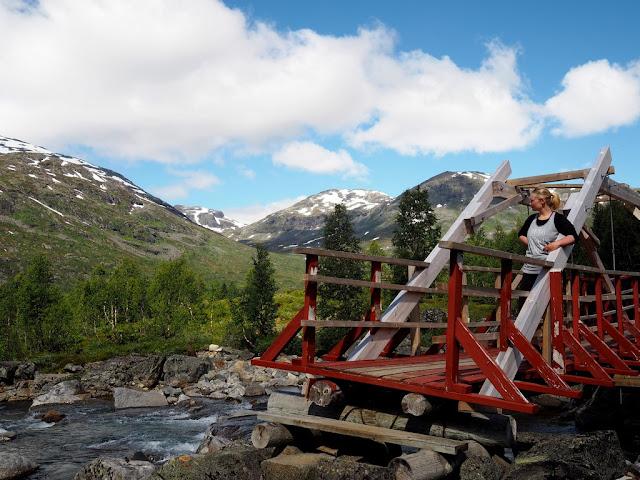 Trek, cesta, kamení, příroda, Norsko, Jotunheimen, národní park, turistika