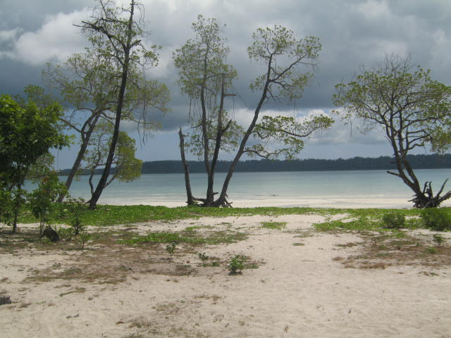 Vijaynagar Beach, Best Places to visit in Andaman & Nicobar
