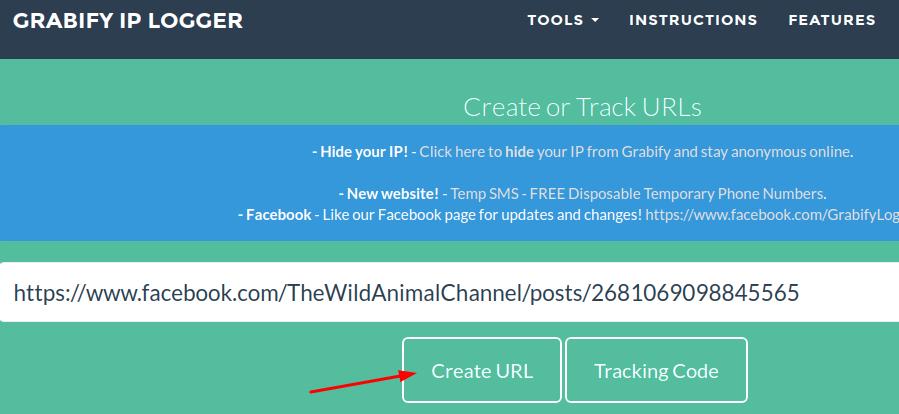 create IP logger link