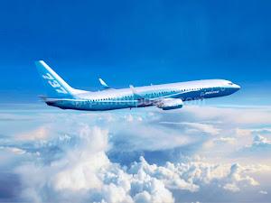 Boeing 737-900 Next-Generation Specs, Interior, Cockpit, and Price