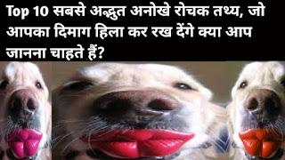 Top 10 सबसे अद्भुत अनोखे रोचक तथ्य, जो आपका दिमाग हिला कर रख देंगे क्या आप जानना चाहते हैं? - Top 10 most amazing unique interesting facts in hindi