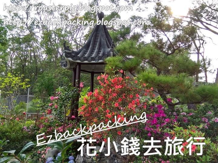 香港花卉展覽2021:獅子山公園