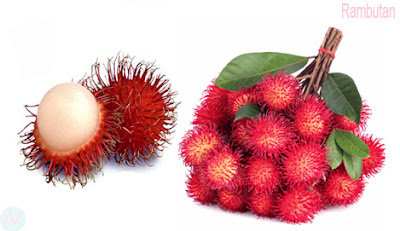 Rambutan, Rambutan furit,রামবুটান
