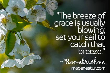 Breeze-Sayings