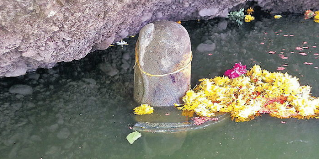 ताप्ती नदी से प्रकट हुआ संगेखारा पत्थर का प्राचीन दुर्लभ अखंड शिवलिंग | MP NEWS