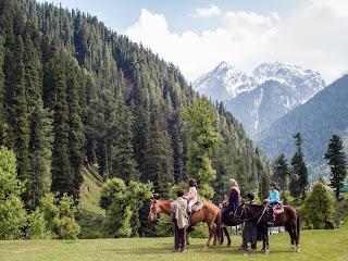 horse riding in kashmir