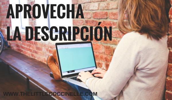 descripcion blog blogger