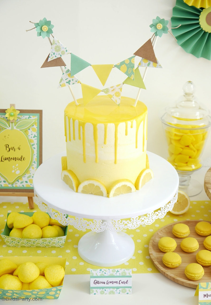 Lemon Themed Party Ideas With Diy Decorations Party Ideas Party Printables Blog