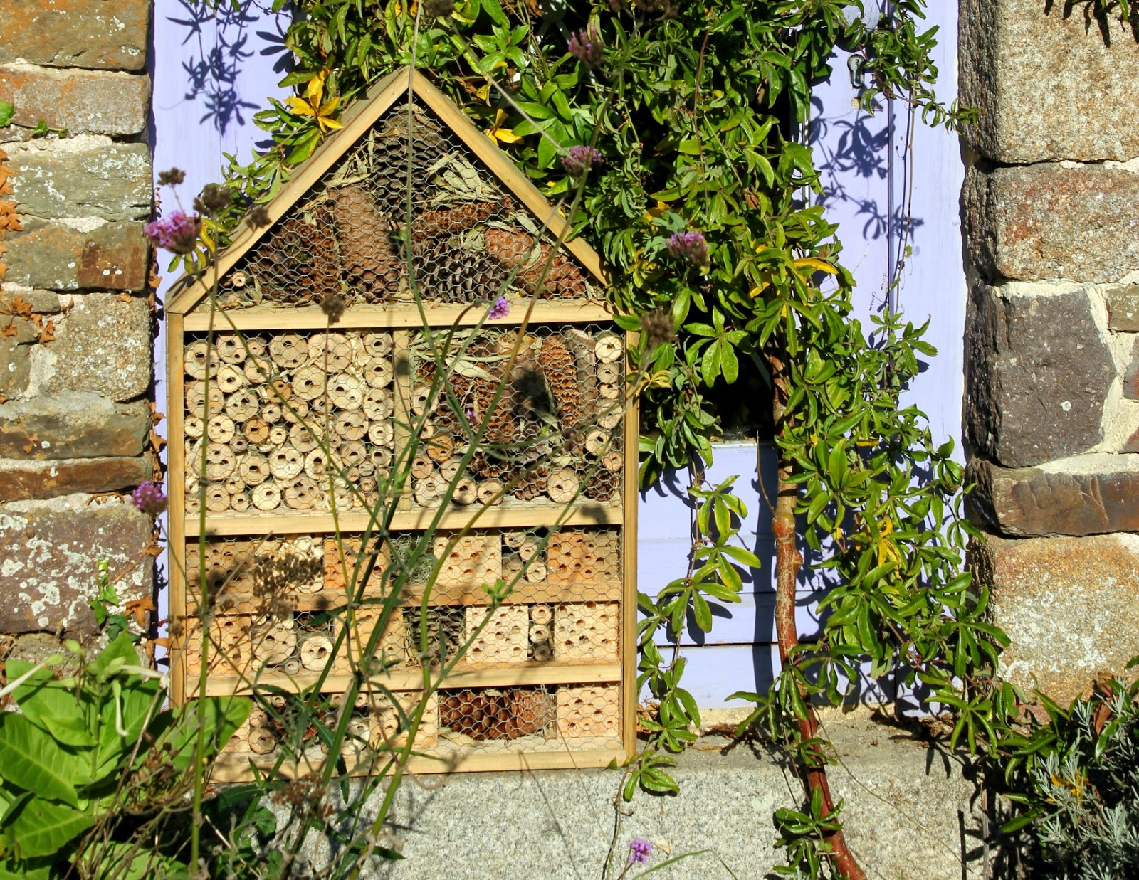 Large luxury insect hotel