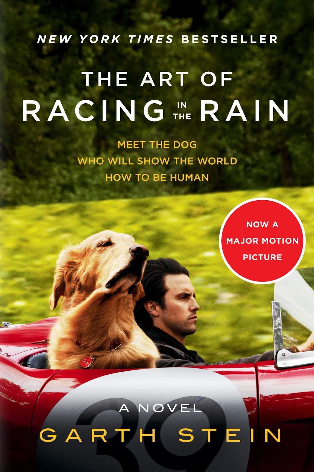 Cuộc Đời Phi Thường Của Chú Chó Enzo - The Art of Racing in the Rain