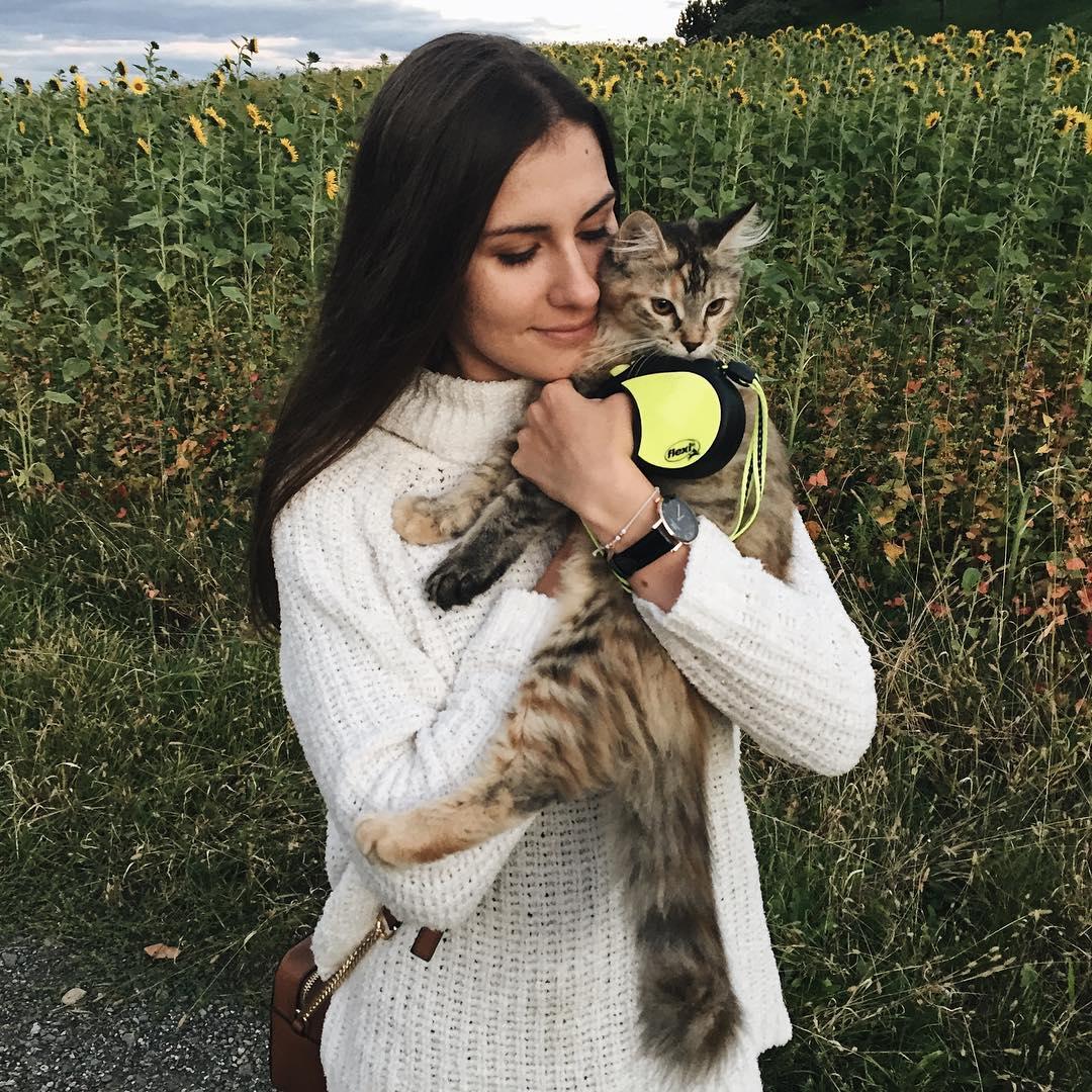podróże, kot, podróże z kotem, jak podróżować z kotem