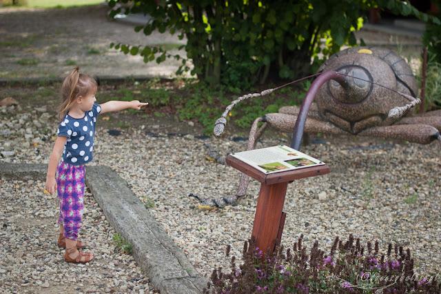 owadolandia, wycieczki z dzieckiem