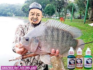 Essen Ikan Nila Khusus Di Danau