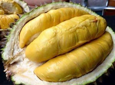 buah durian yang jatuh ke tanah menghasilkan energi
