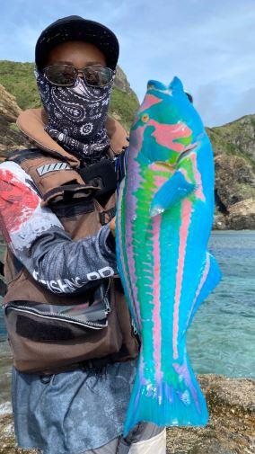سمكة نادرة تسبب حيرة على السوشيال ميديا فى اليابان