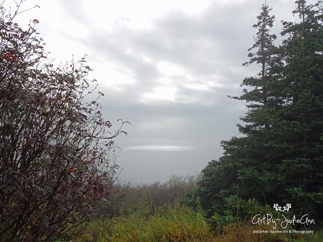 Newfoundland Fog