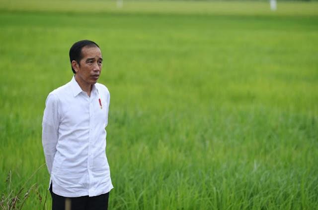 PKS: Pemerintah Tunda RUU HIP Hanya Statement PHP, Presiden Belum Bersikap