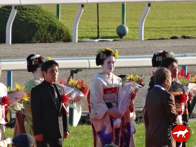 Geishas à l'hippodrome de Kyoto pour le grand prix kikuka